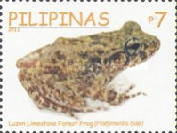 [Philippine Endemic Frogs, Typ JEE]