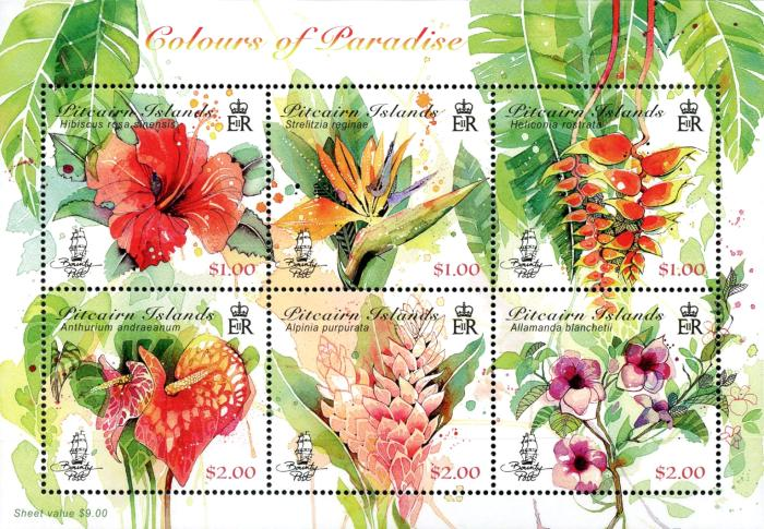 [Flowers - Pitcairn Colours of Paradise, type ]