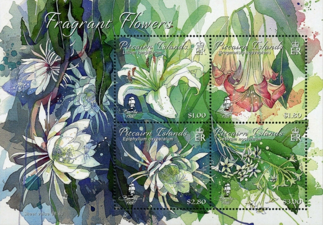 [Pitcairn Fragrant Flowers, Typ ]