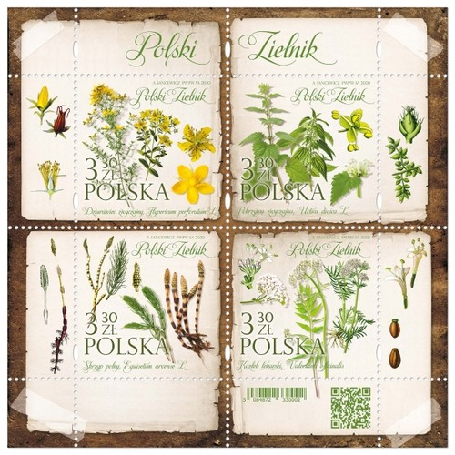 [Polish Herbarium, type ]
