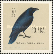 [Protected Birds of Poland, type AEK]