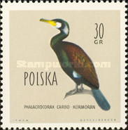 [Protected Birds of Poland, type AEL]