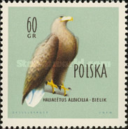 [Protected Birds of Poland, type AEO]