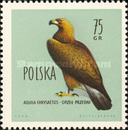 [Protected Birds of Poland, type AEP]