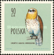 [Protected Birds of Poland, type AEQ]
