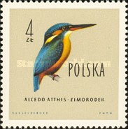 [Protected Birds of Poland, type AES]