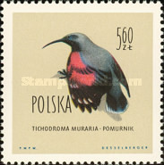 [Protected Birds of Poland, type AET]
