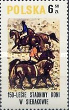 [The 150th Anniversary of Horse Riding in Sieraków, type CGY]
