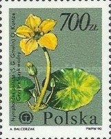 [Protected Plants and Flowers from the Botanical Gardens of Warsaw University, type DDO]