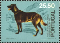 [The 50th Anniversary of the Union of Dog Breeding, Typ ACR]