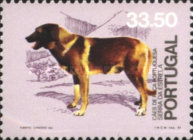 [The 50th Anniversary of the Union of Dog Breeding, Typ ACS]