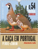[Birds - Hunting in Portugal, type EXN]