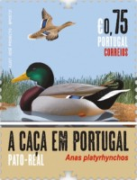 [Birds - Hunting in Portugal, type EXO]