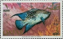 [Fish of the Arabian Gulf - Previous Issues Surcharged, type AA3]