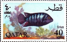 [Fish of the Arabian Gulf - Previous Issues Surcharged, type AB1]