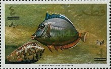 [Fish of the Arabian Gulf - Previous Issues Surcharged, type X3]