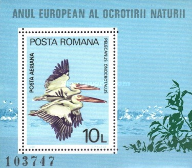 [European Nature Conservation Year, type ]