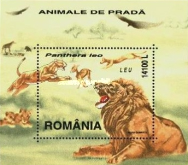 [Predators - Big Cats, type ]