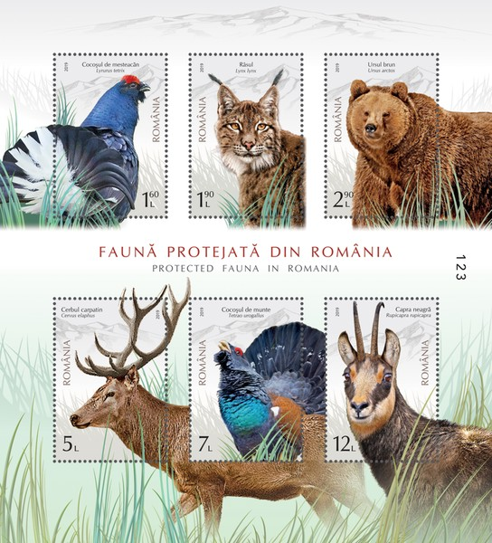 [Protected Fauna in Romania, type ]