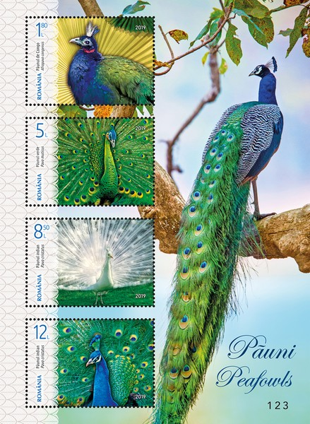 [Birds - Peafowls, type ]