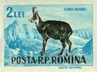[Game Animals - As No.1570-1581, Imperforated, type BFV1]