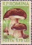 [Mushrooms, type BLY]