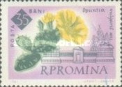 [The 100th Anniversary of the Botanical Garden, Bucharest - Flowers, type BXK]