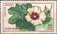 [The 45th Anniversary of the Founding of Cluj Botanical Garden, type CNS]