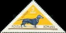 [Hunting Dogs, type CPP]