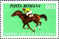 [The 100th Anniversary of Horse Racing in Romania, type DRF]