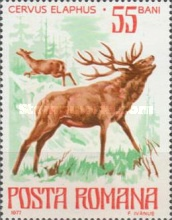 [Protected Animals, type EAG]