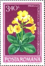 [Protected Flowers, type EGV]