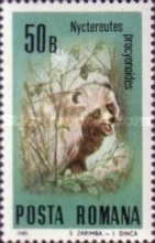 [Protected Animals, type FTV]
