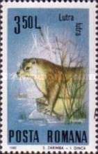 [Protected Animals, type FUA]