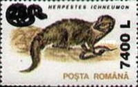 [Animals Stamp of 1993 Surcharged, type GCV1]