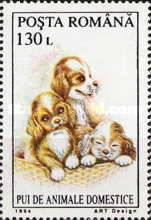 [Young Domestic Animals, type HFS]