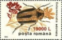 [Insects - Beetles Stamp of 1996 Surcharged, type HKW2]