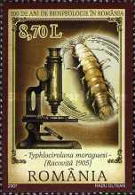 [The 100th Anniversary of Biospeology in Romania, type IUX]
