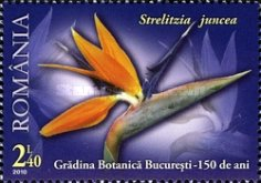 [The 150th Anniversary of the Bucharest Botanical Garden, type JGF]