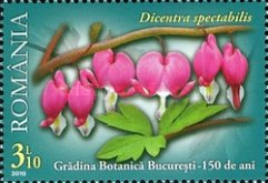 [The 150th Anniversary of the Bucharest Botanical Garden, type JGH]