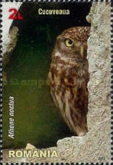 [Birds of Prey - Owls, type JQM]