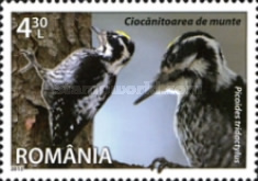[Fauna - Species of Romania, type JRU]