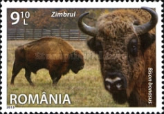 [Fauna - Species of Romania, type JRW]