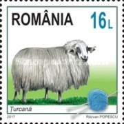[Breeds of Sheep from Romania, type KMB]
