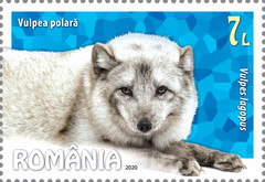 [Fauna - Polar Animals, type LAE]