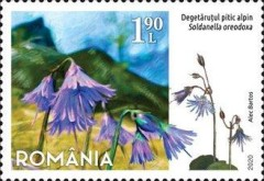 [Flora - Protected Flowers of Romania, Typ LDK]