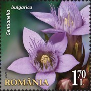 [Flora from National Reserves, type LGW]