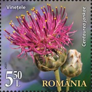 [Flora from National Reserves, type LGY]