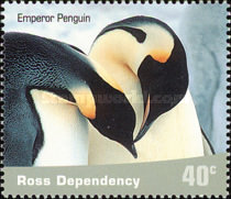[Penguins, type AW]