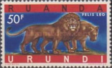 [Endangered Animals - Big Cats, type CN]